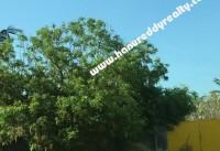 Chennai Real Estate Properties Parking Yard for Rent at Madambakkam