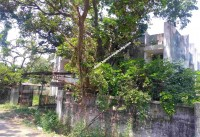 Chennai Real Estate Properties land for Sale at Thiruvanmiyur