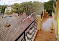 Mysuru Real Estate Properties Flat for Rent at Vani Vilas Mohalla
