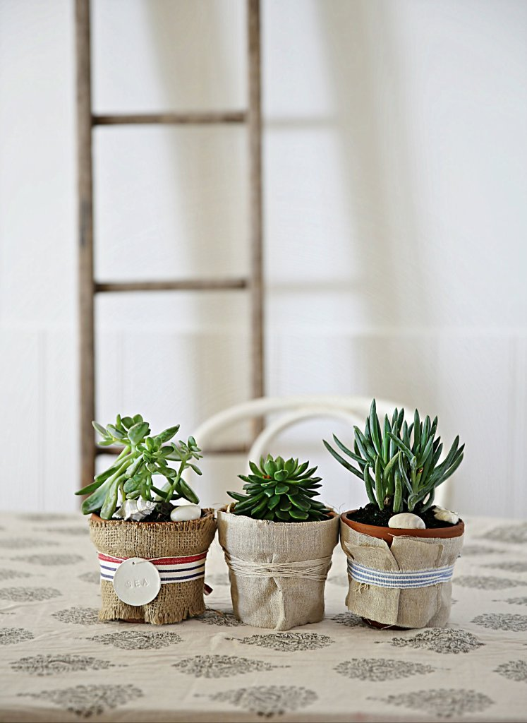 Real estate budget home decor 10 simple ways to revamp for Real plants for home decor
